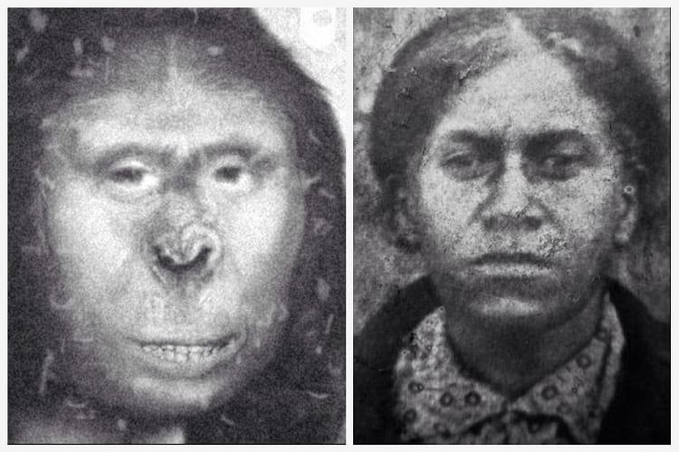 Zana Ape Woman