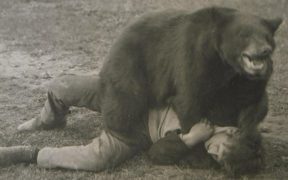 A man and a bear wrestling.