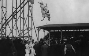 A horse diving from a custom made platform.