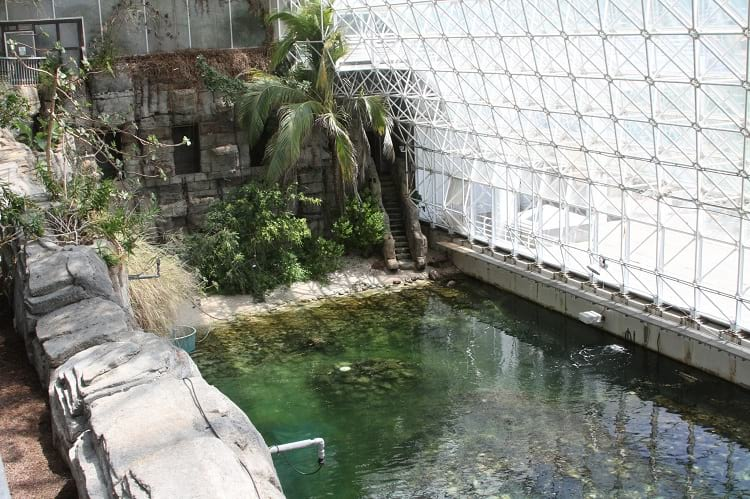 Another view of the ocean inside the Biosphere 2.