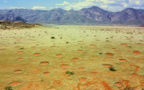 Fairy circles in Marienfluss valley