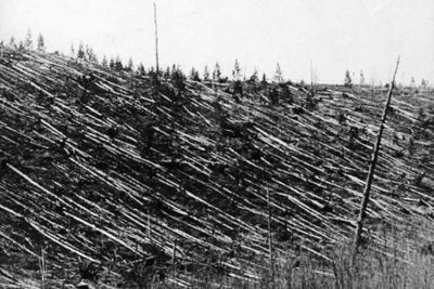 Aftermath of the Tunguska event.