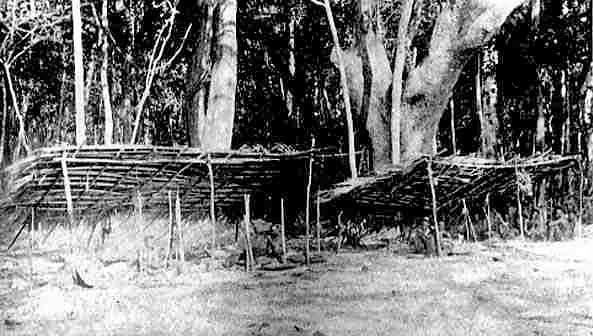 The Jangli hut at Rutland Island