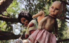 Dolls hanging from the tree