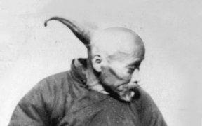 Wang the human unicorn