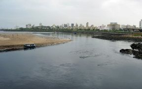 Mahim Creek