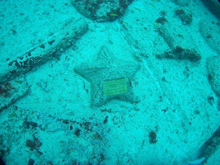 A starfish memorial, Neptune Memorial Reef.