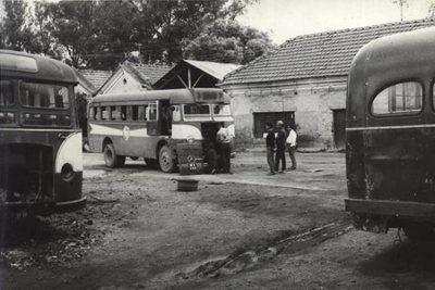 Tata Mercedes Benz buses.