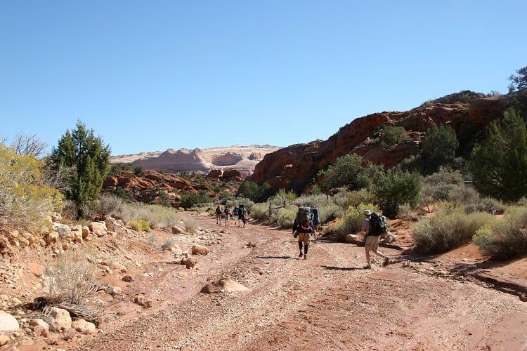 Wire Pass Trailhead