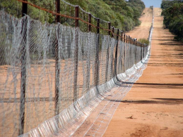 Emu Fence.