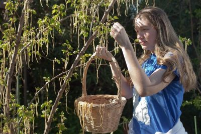 A young woman harvesting spaghetti from a tree.