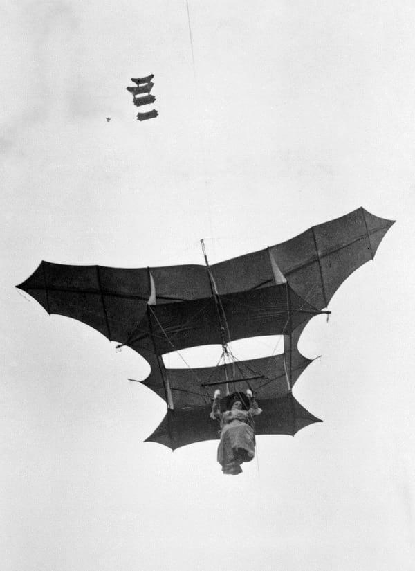 The Bat kite