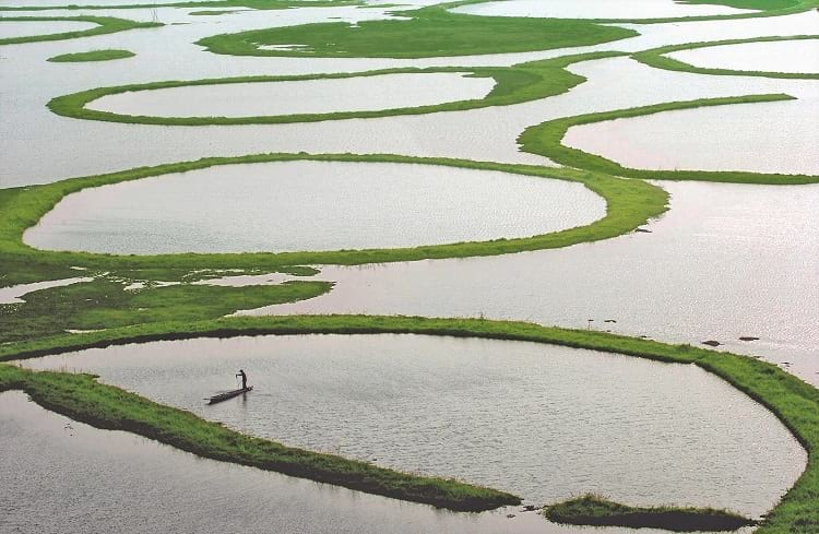 A fisherman out for a catch at the Loktak Lake.