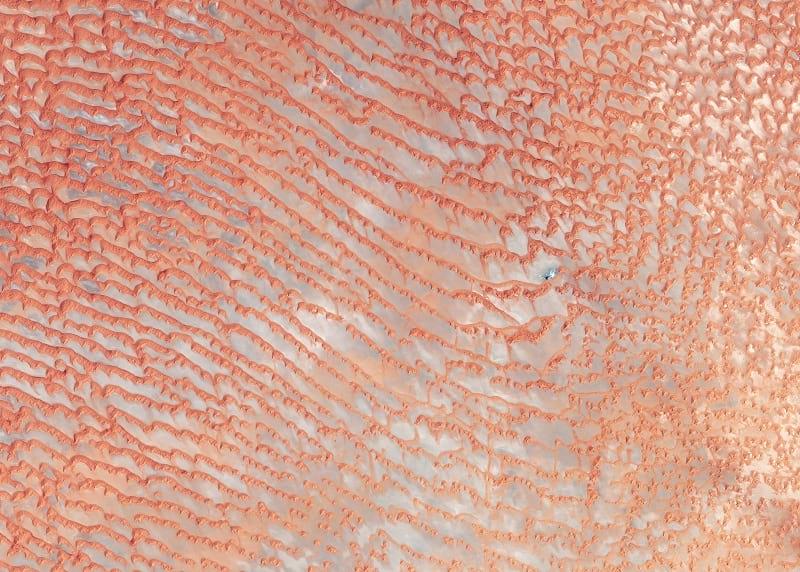 Satellite photo of the desert.