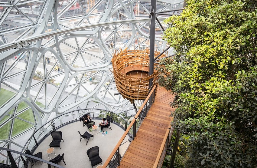 Amazon sphere's nest.