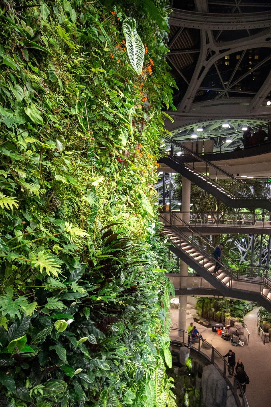 Living wall inside Amazon Spheres.
