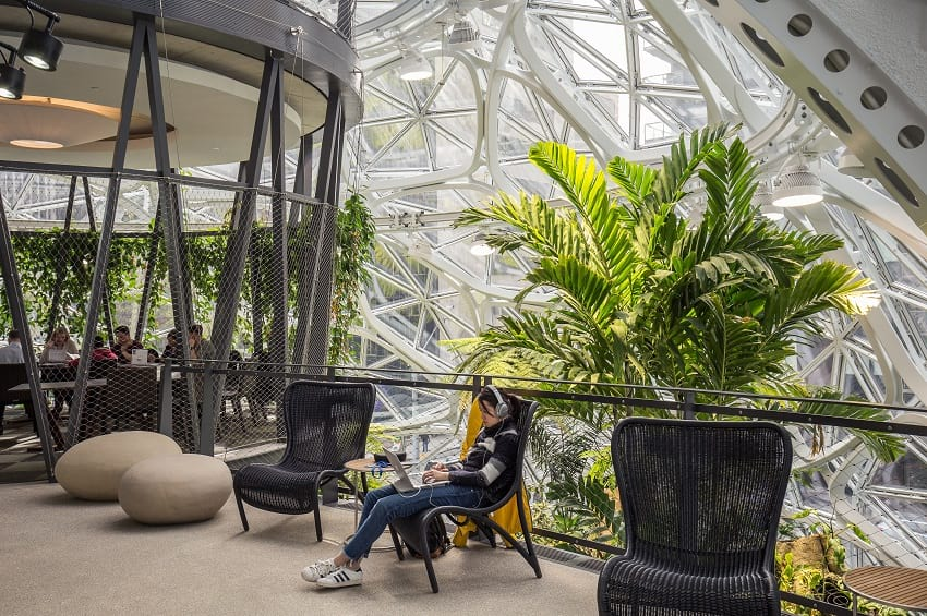 Inside the Amazon Spheres.