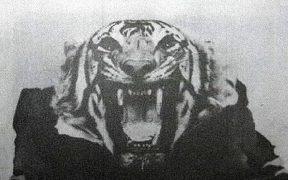 Champawat Tiger